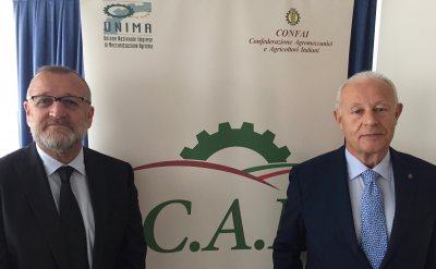 Italian contractors join forces to get stronger