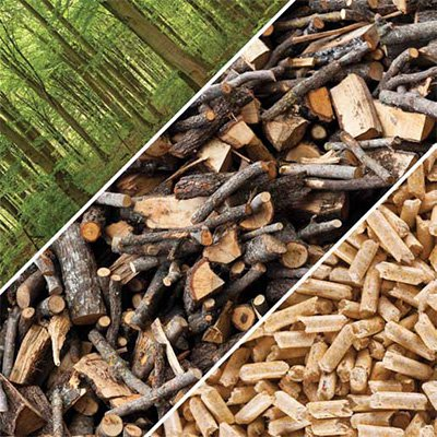 Forestry contractors support a national risk based approach in assessing sustainability of production of woody biomass