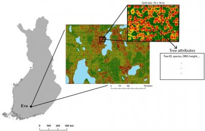 Forestry contractors in Finland agree on new principles relating to ownership, use and processing of data